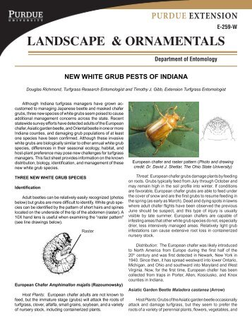 LANDSCAPE & ORNAMENTALS - Purdue Extension Entomology ...