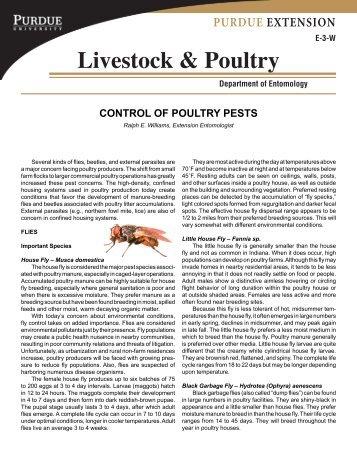 Control of Poultry Pests - Purdue Extension Entomology - Purdue ...