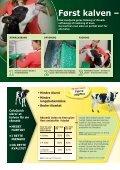 Tidligere kælvingsalder og højere mælkeydelse - coloQuick - Page 2