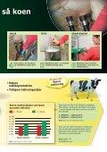 Tidligere kælvingsalder og højere mælkeydelse - coloQuick - Page 3