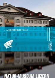 pdf (1.2 MB) - Naturmuseum Luzern