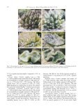 Changes in zooxanthellae density, morphology, and mitotic index in ... - Page 6