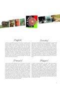Guide de l'exposition - cult rural - Prisma - Page 7