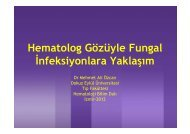 Hematolog Gözüyle Fungal İnfeksiyonlara Yaklaşım