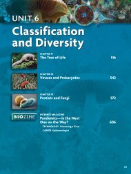 Classification and Diversity