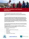 A Rocky Seashore and Factors affecting it - Page 2