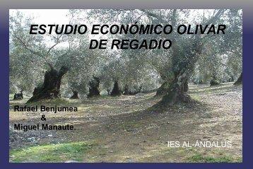 ESTUDIO ECONÓMICO OLIVAR DE REGADIO