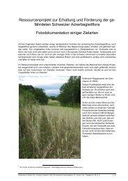 Fotodokumentation Zielarten.pdf - Hintermann & Weber AG