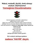 dr-mcdougalls-cpb-turkish - Page 3