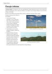 Énergie éolienne - Patrick MONASSIER - Free