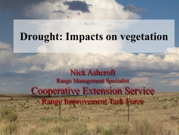Drought: Impacts on vegetation