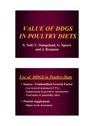 VALUE OF DDGS IN POULTRY DIETS
