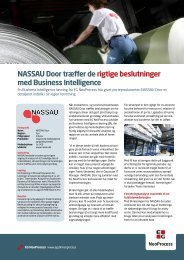 Læs hele historien om NASSAU Doors erfaringer med BI