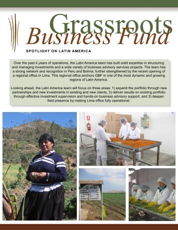 Latin America Factsheet - Grassroots Business Fund