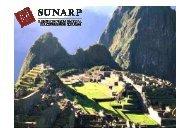 La Web de la SUNARP de Perú