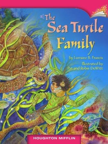 Lesson 4:The Sea Turtle Family
