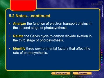 Carbon cycle lesson high school