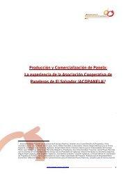 Producción y Comercialización de Panela: La experiencia ... - Rimisp