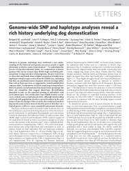 Genome-wide SNP and haplotype analyses reveal a rich history ...