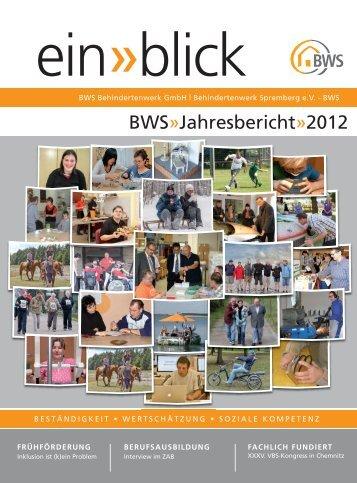 Einblick 2012 - Behindertenwerk Spremberg