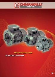 Motori Elettrici - Tecnicaindustriale.net