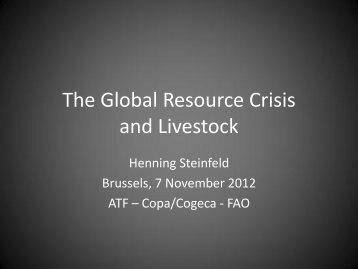 Presentation Henning Steinfeld, FAO - Animal Task Force