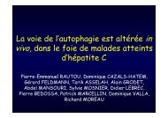(Microsoft PowerPoint - C57-RAUTOU.ppt [Lecture seule ... - Afef