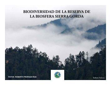 biodiversidad de la reserva de la biosfera sierra gorda - Ecosystem ...