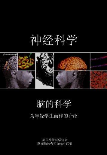 No Slide Title - British Neuroscience Association