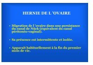 hernie fille - SOFOP