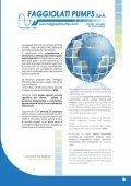 monografia, pdf - Faggiolati Pumps - Page 3