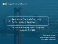 Resource Capital Cost and Performance Review - Western ...