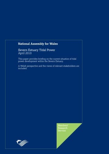 Severn Estuary Tidal Power - National Assembly for Wales