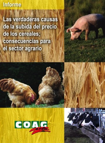 Informe subida precio cereales - Coag