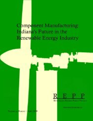 Indiana's Future in the Renewable Energy Industry - SC Works ...