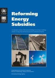 Reforming Energy Subsidies - Global Energy Network Institute