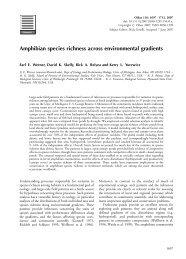 Werner et al. (2007)