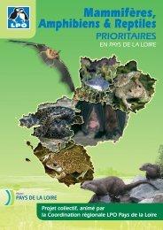 Mammifères, Amphibiens et Reptiles prioritaires en ... - Webissimo