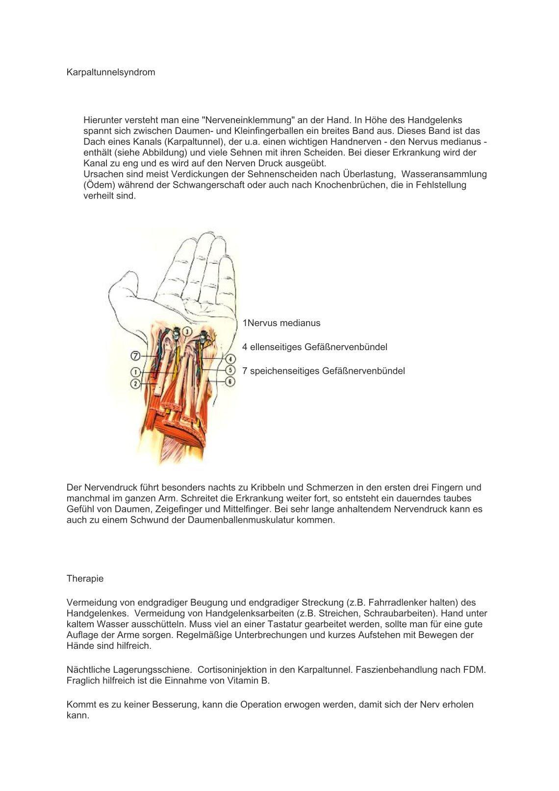 Nett Grundlagen Der Anatomie Und Physiologie 3. Auflage Arbeitsmappe ...