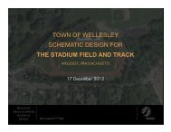 12/17/2012 Early Stadium Field and Track pre ... - Town of Wellesley