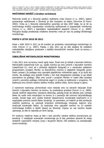 1 MOČVIRSKI KREŠIČ (Carabus variolosus ... - Natura 2000