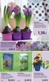 2,99 - 1A Garten Schmidt - Seite 2