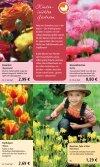 2,99 - 1A Garten Schmidt - Seite 3