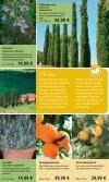 2,99 - 1A Garten Schmidt - Seite 6