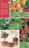 2,99 - 1A Garten Schmidt - Seite 7