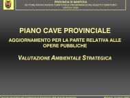 PIANO CAVE PROVINCIALE - Provincia di Mantova