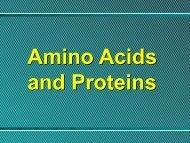 Amino Acids - Ecu