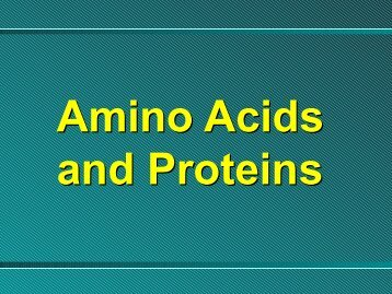 Amino Acids - Ecu