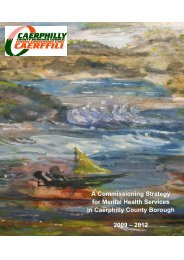A Commissioning Strategy for Mental Health Services in Caerphilly ...