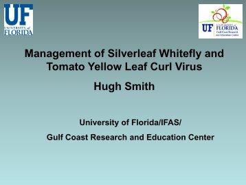 Management of Silverleaf Whitefly and TYLCV - University of Florida